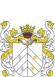 Burgielski Coat of Arms