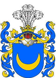 Zienkowicz Coat of Arms